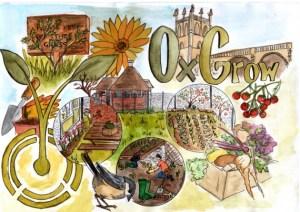 OxGrow poster